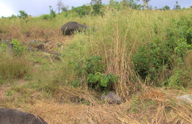 Photo #1 Empty Land for sale in Sierra Leone, Angola Town, Peninsular Road