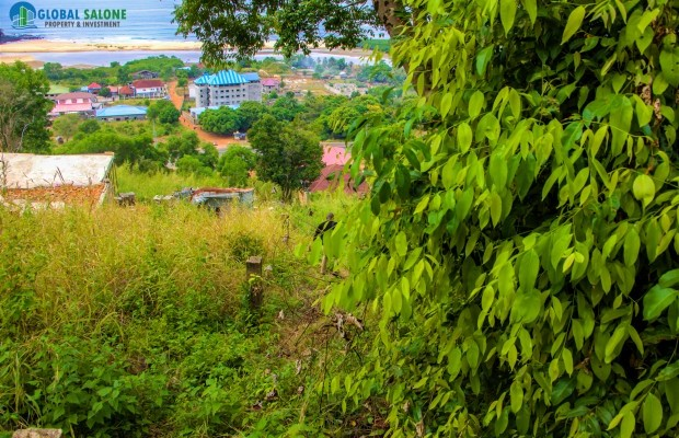 Photo #7 Empty Land for sale in Sierra Leone, Sussex, Sussex Village